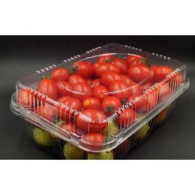 Rectangular fruit container with lid