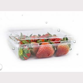 Square strawberry container