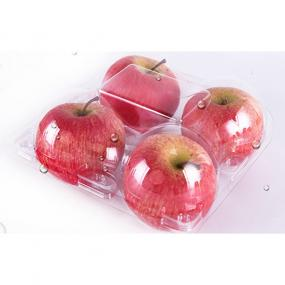 Apple container