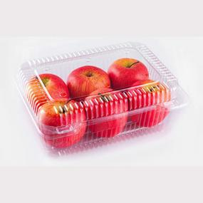 Large fruit & vegetable container