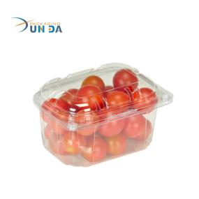 Durable Fruits Packaging Transparent PET Large Plastic Box With Cover