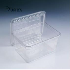 Clear PET Plastic Clamshell Rectangular Food Box with Lid